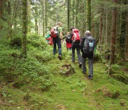 Camping Clos De La Chaume: Gezinswandeling in de Vosges