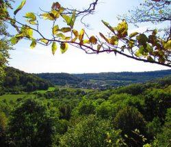 Camping Clos De La Chaume: Uizicht op Montenach